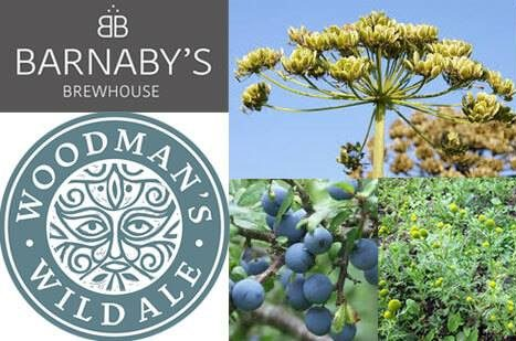 barnabys-brewhouse-events-riverford-field-kitchen-foraging-sept-2017